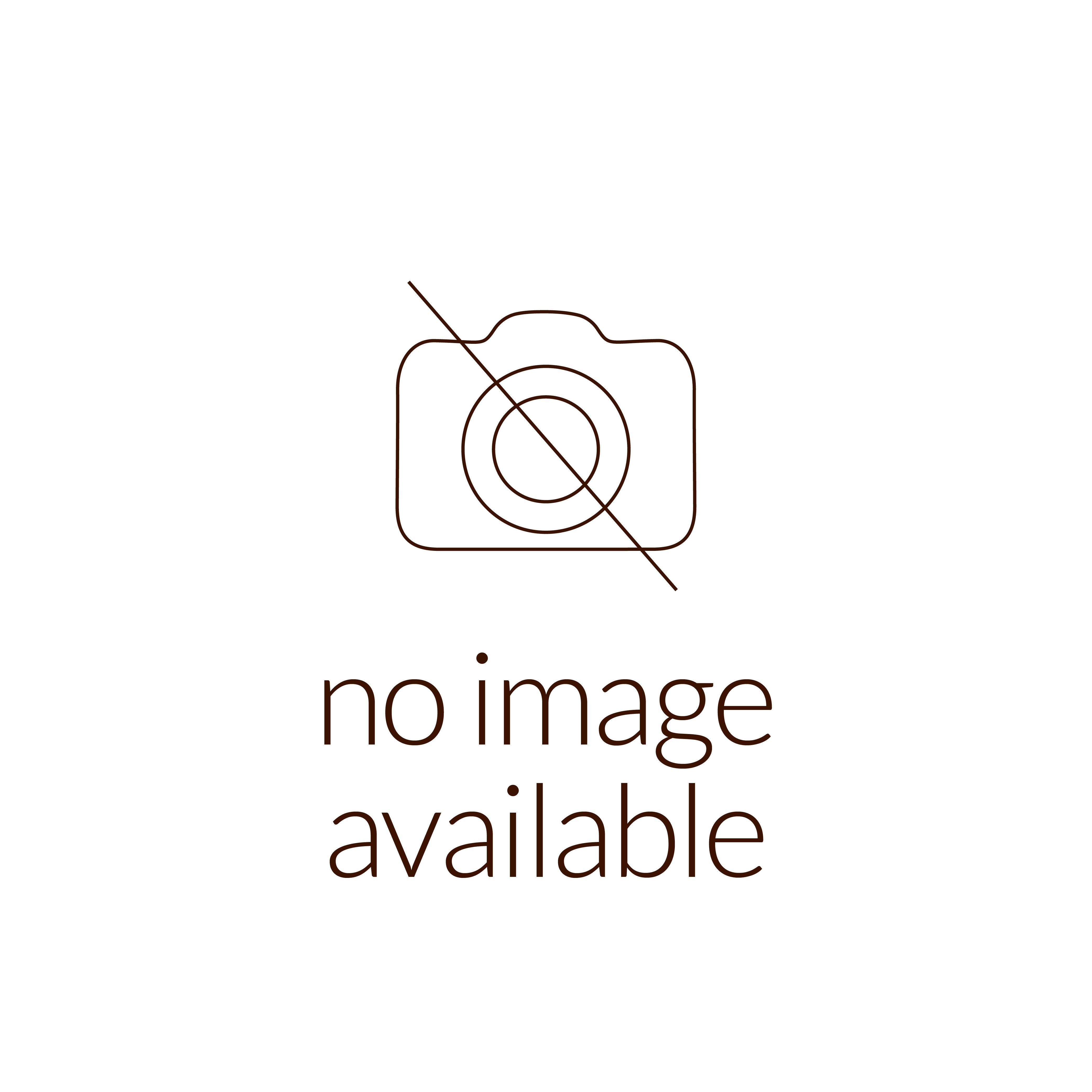 Tribe of Judah, Salvador Dali - 75x60mm Oval Bronze Medal with Color Silkscreen